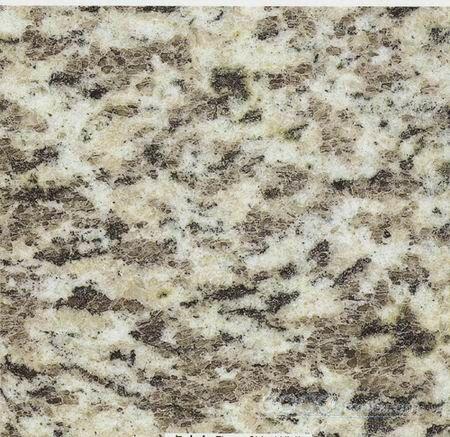 Tiger_Skin_White Granite