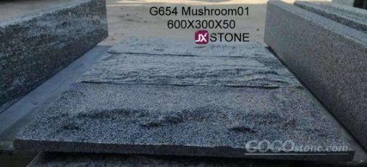 g654 mushroom